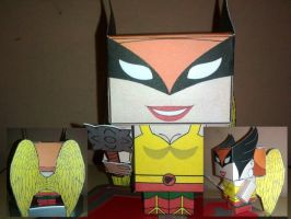 Cubeecraft Hawkgirl Completed by handita2006