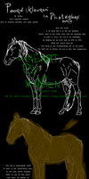 How to draw a horse - DUTCH by xxNiien