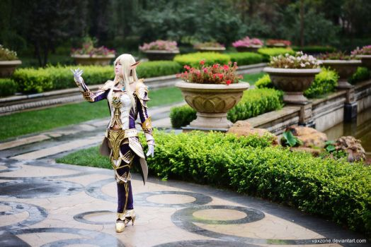 Lineage II - Elf Class by vaxzone