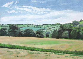 View from Carewswood looking Southeast by eastcorkpainter