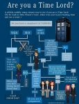 Time Lord Info-Graphic by SilverPixiGirl