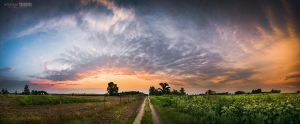 Dirt road at sunset by NorbertKocsis