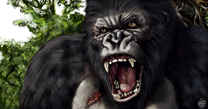 Kong by leseraphin
