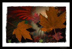 Falling Leaves of Fall by GypsyH