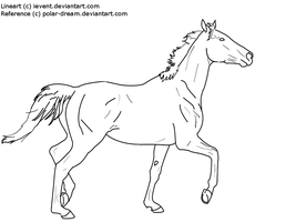 Thoroughbred Line Art by iEvent