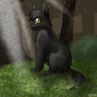 Yellowfang for Morogoddess by Eleeveen