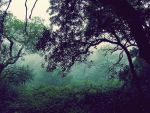 the mighty jungle by pariah87