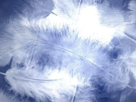 Blue Feathers Background by HLSeibert