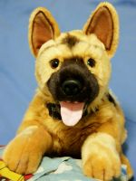 Cute German Shepherd Plush Toy by shironranshiin