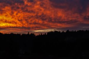 Sunset in Lorane, Oregon by ErnaR