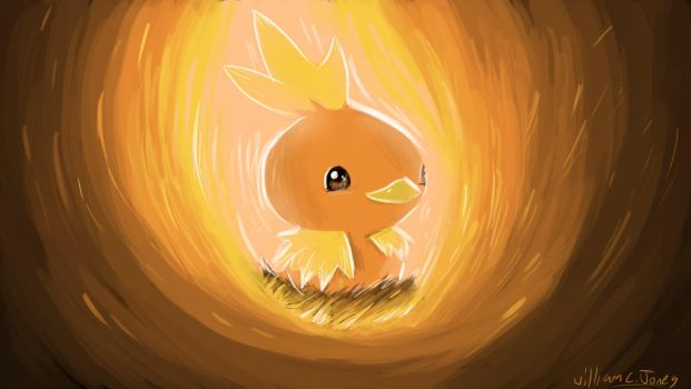 Torchic campfire by SirNerdly