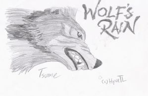 Wolf s rain tsume my drawing by hyvepl