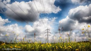 Electric Nature #05- Point of View by artofphotograhy