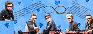 One Direction Facebook Cover for kittycat3302 by iluvlouis
