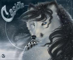 Casidhe Badge by balaa