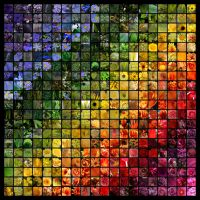 What is it Called by SdCa-Art-Prints