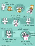 Bunny Logic by sebreg
