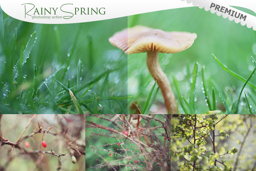 Rainy Spring - Photoshop Action by puckrietveld