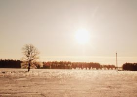 Cold light 3 by annbuht