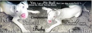 Yes, I am a Pit Bull by AlexLibby