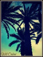 Palms To The Sky by OmbraSova