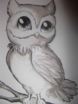 You Obviously Like Owls by Emily-Draws-Things