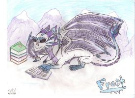 Frost the Young Dragoness by queenfirelily17