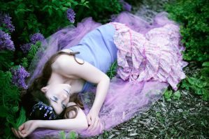 FairyTales by DmajicPhotography