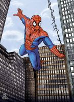 Hooray for Spider-Man by thelearningcurv