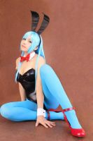 Bulma Dragon Ball Bunny by Zettai-Cosplay