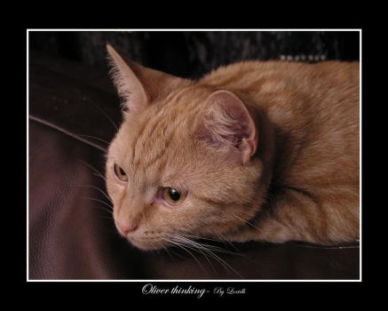 Oliver thinking by lexidh