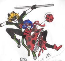 Ladybug and Cat Noir by MonsterH21SW