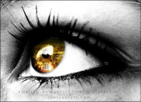 Sunset in my eyes :heart: by Amaliell