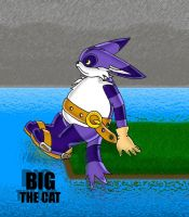 Request : Big the cat by KaiThePhaux