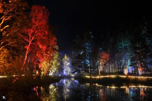 Enchanted Forest 5 by kilted1ecosse