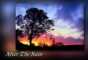 After The Rain by PeterPawn