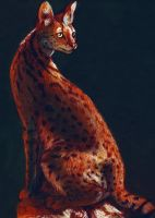 Serval by RianaLD