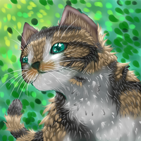 Forest Cat by GreenPoem