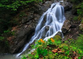 Spring Waterfall by lica20
