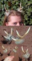 Antlers Headband by Quantum-Kid