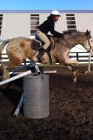 Jumping almost 4ft by MeganSambuca
