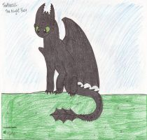 Toothless the Night Fury by FlygonPirate