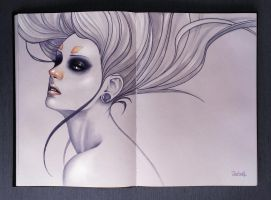 SketchBook. Long white hair by sashajoe