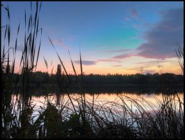 Habrovice pond after sunset by Pildik