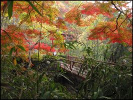 Autumn Jungle by AntiRetrovirus