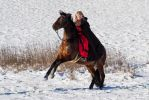 Amazing Turn Evasion Move Horse and Rider by LuDa-Stock
