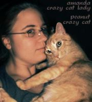 crazy cat lady by swiftgold