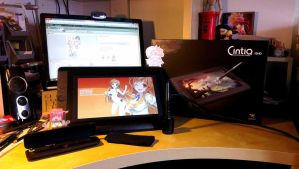 Wacom Cintiq arrived! by Thurosis
