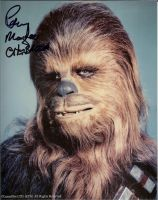 Chewbacca's autograph by Robot001