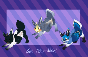 Fledgling Wolpertingers **OPEN!** Price REDUCED! by Taelune